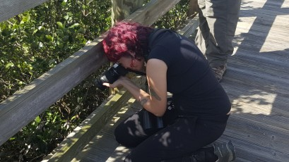 Rebecca Smith taking photo of Clapper Rail
