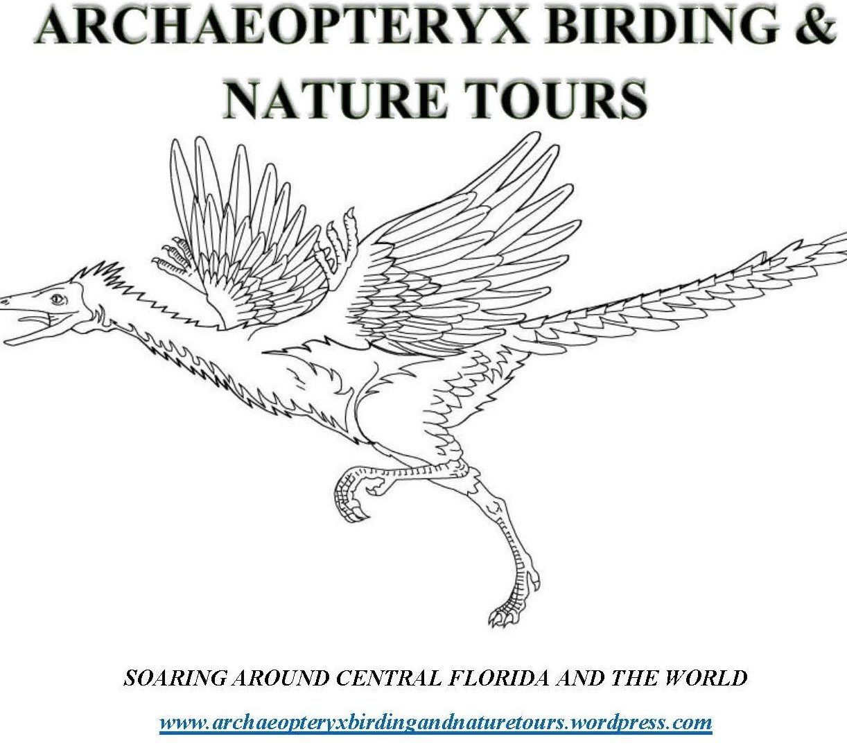 Archaeopteryx Birding and Nature Tours